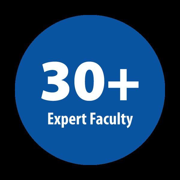 25+ faculty